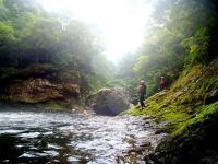 人工物がほとんどない大自然が広がる北山川、その支流で始まる冒険ツアー!