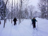 フカフカの雪の上を自由に歩こう!
