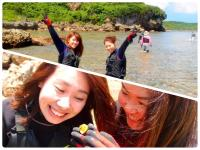 海岸トレッキングで海の生物観察も楽しめる!