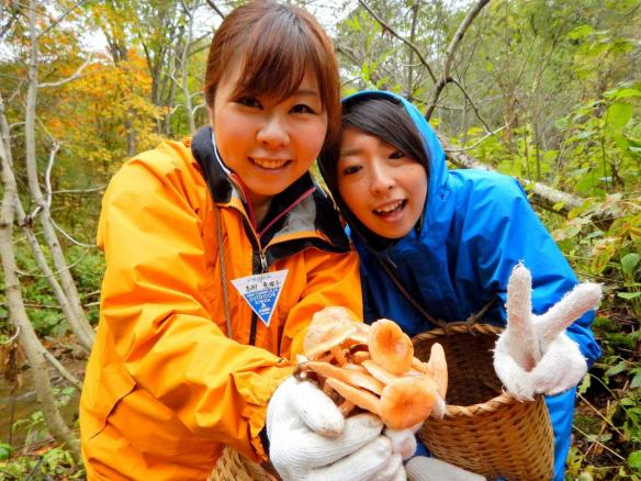 野尻湖 山菜採り・きのこ狩りハイキング