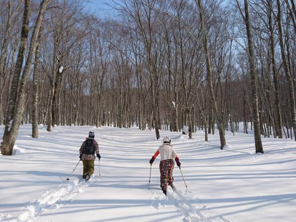 田沢湖(乳頭温泉周辺) 歩くスキー