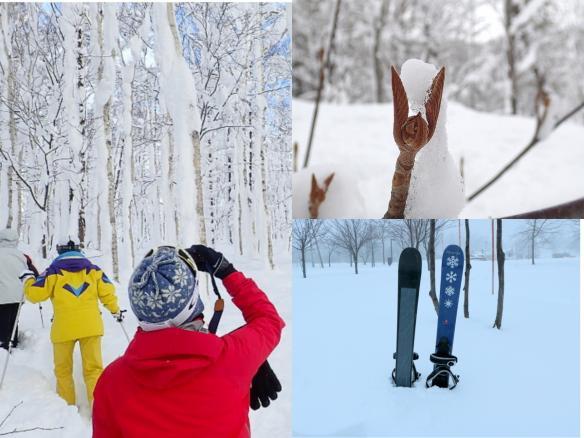 ニセコ 歩くスキー(スノーランブラー)ツアー