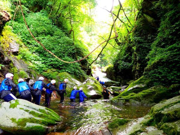 原生林の森に囲まれた谷はマイナスイオンたっぷり!歩いているだけで癒されます。