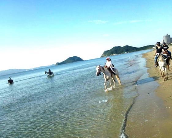 《小学校1年生》より、自ら馬を操り、海岸乗馬を楽しめます。(※キッズ乗馬は、未就学児童も参加OK!!)