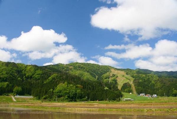 『国定公園・神鍋高原』この自然豊かな場所で、本格的なパラグライダー体験を存分に楽しんで下さい