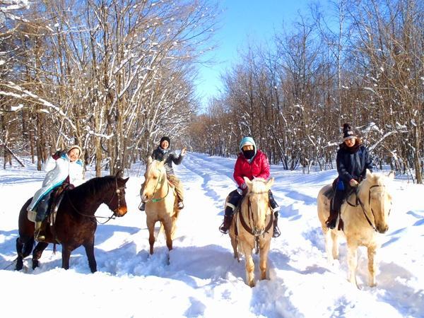 北海道の大自然を馬上から楽しもう!冬には雪上トレッキングも楽しめます!
