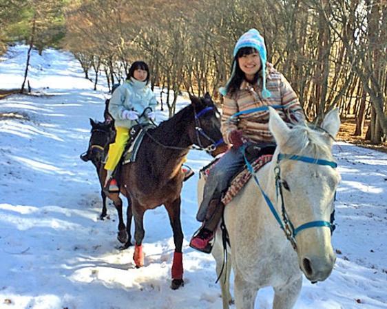 1月中旬~3月上旬は雪上乗馬が期待できます。晴天率が高いのも冬の八ヶ岳の特徴です!