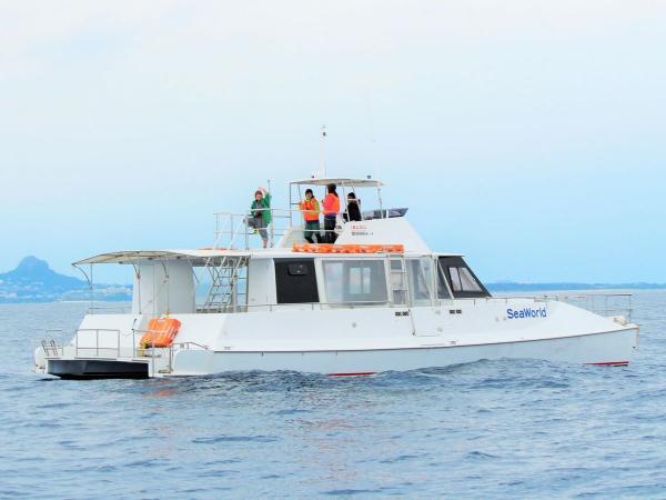 広くて快適なカタマランボート(双胴船)は、移動中もクジラ観察中もゆったりスペースで楽しめます!