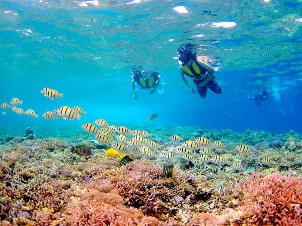 珊瑚のかけらで出来た無人島「バラス島」