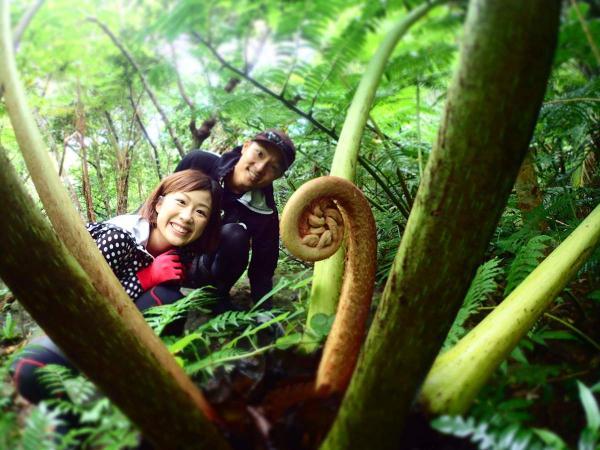 亜熱帯のジャングルを探検しよう!