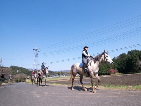 石岡 ホーストレッキング(乗馬)