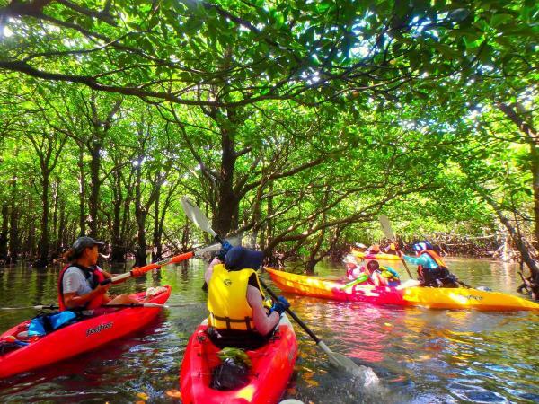 石垣島の偉大な自然と一体になって遊ぼう!