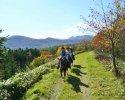 北海道サホロ  ホーストレッキング(乗馬)