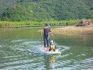 奄美大島 マングローブSUP