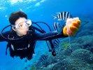名護(ウィードビーチ) 体験ダイビング