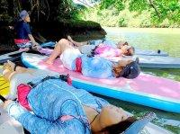 マングローブ林で、癒しの水上時間をお届けします