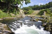 手付かずの原生林、北海道空知川の大自然