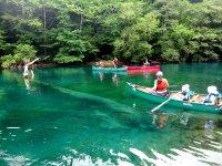 透明度17m~20mのクリアな水の中には色々と面白い物が。