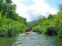 川幅が狭くなるエリアはジャングルクルーズのよう!ちょっとした探検気分も楽しめます。