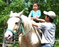 人の足ではなかなか行けない草むらも、馬はぐんぐん進み山を登ります。