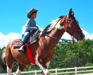 『人に優しい馬を育てる』これが八ヶ岳ロングライディングのこだわりです!