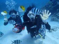 【チービシ/半日】体験ダイビングで熱帯魚と泳ごう!