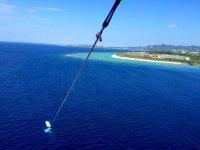 美ら海水族館から10分!高度50mの空中散歩!