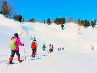 積雪豊富な十日町でスノーシュー!一面の銀世界でスノーシューハイクを楽しもう。