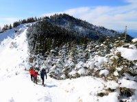 本格的な雪山トレッキングがスノーシューで楽しめる!
