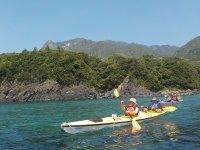 森が海に迫る屋久島