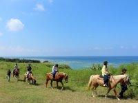 沖縄らしい美しい自然が広がるロケーションでホーストレッキングを楽しもう!