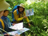 ツアーで見ることができる生き物・植物の写真を付けた観察シートを、人数分ご用意します!
