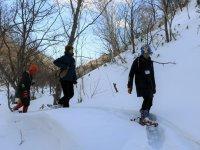 知床羅臼の森をスノーシューで散策!動物たちの足跡や季節の鳥たちを探してみましょう。身近な自然と動物たちの営みを体感することができます。