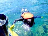 水の世界をのぞき込んでみよう!