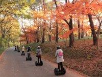 心癒される秋の色
