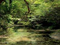 美しい水の流れる世界へ!