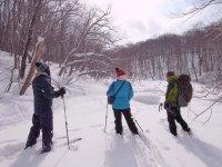 静かな冬の森をひとり占め!