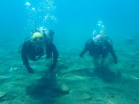 水質日本一の支笏湖でダイビング
