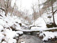 雪化粧をした勇払川