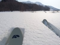 フカフカの深雪の上を歩くスキーで散策