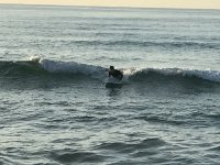 サーファーの聖地奄美大島で波乗りを楽しもう!