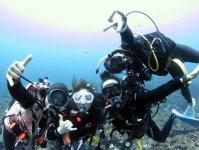 石垣の海でダイビングを満喫しよう!