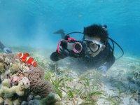 水中カメラを無料レンタル!好きなアングルでたくさん撮影しよう!