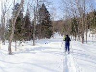 冬だけの景色!スノーシューを履いて摩周湖エリアの森を散策しよう!
