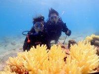 透明度抜群の奄美大島の海を楽しもう!
