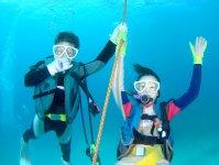 透明度抜群の美しい海でダイビングが楽しめる!