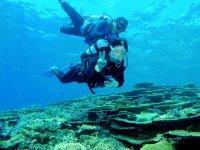 ストレスフリーなフルフェイスマスクで体験ダイビングができる!普段と変わらない呼吸で水中を楽しもう
