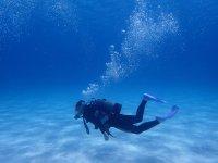 透き通る透明度、美しい白砂の海中