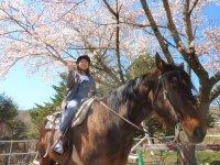 季節変化が豊かな八ヶ岳山麓に広がる馬のまち