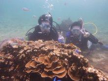 沖縄本島(糸満)体験ダイビング